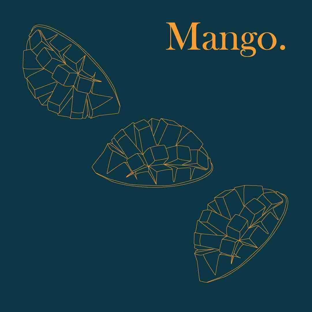 Mango illustration used for cookbook design